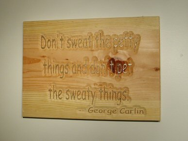 Don't sweat the petty things and don't pet the sweaty things. George Carlin