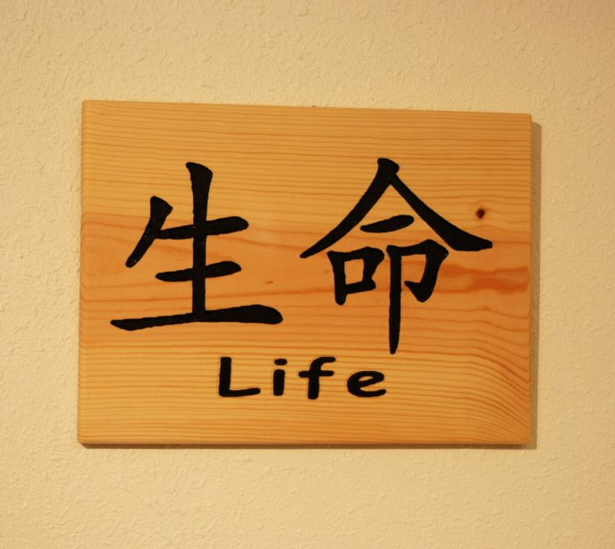 Chinese symbol for Life